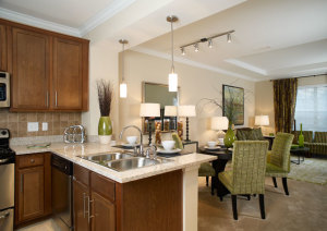 Atlanta Corporate Housing Rentals 12
