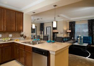 Atlanta Corporate Housing Rentals 8