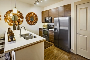 Austin Furnished Rentals By FCH Temporary Housing 11
