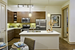Austin Furnished Rentals By FCH Temporary Housing 14