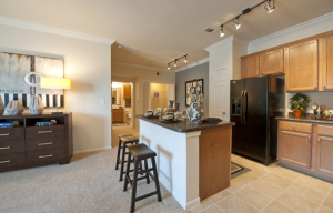 Austin TX Short Term Housing 14