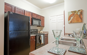 Austin TX Short Term Housing 21