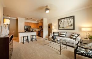 Austin TX Short Term Housing 22