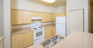 Corporate Apartment Furnished FCH 1
