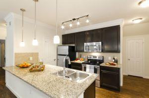 Furnished Apartment Austin 6