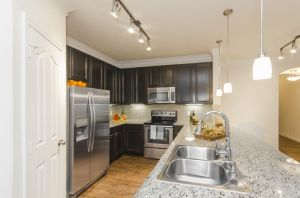 Furnished Apartment Austin 7