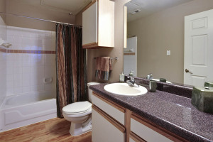 Furnished Apartments By FOX San Antonio 5