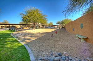 Furnished Rental in Phoenix 8