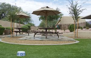 Furnished Rentals in Scottsdale 14