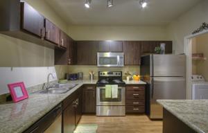 Furnished Rentals in Scottsdale 19