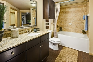 Furnished Temporary Housing Round Rock TX 1