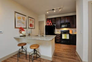 Interior Austin Housing FCH 5