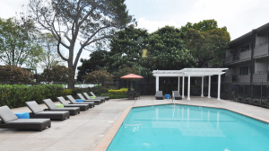 Palo Alto Furnished Rentals 6