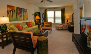Round Rock Texas Corporate Housing 12