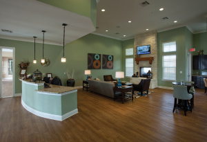 San Antonio Fully Furnished Apartmernts 10