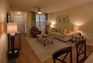 San Antonio Fully Furnished Apartmernts 3