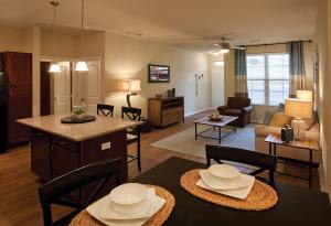 San Antonio Fully Furnished Apartmernts 4