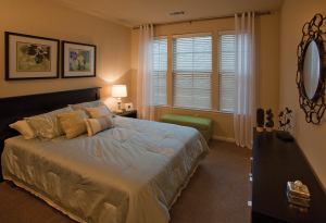 San Antonio Fully Furnished Apartmernts 9