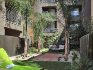 Scottsdale Fully Furnished Rental 4