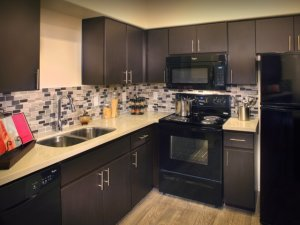 Scottsdale Fully Furnished Rental 9