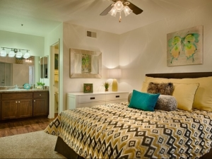 Scottsdale Furnished Rentals 2
