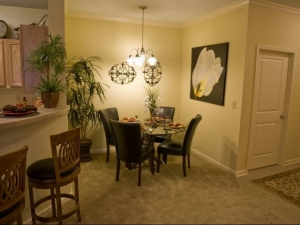 Columbia SC Furnished Apartment 12