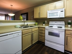 Columbia South Carolina Furnished Rental 13