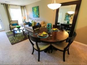 Columbia South Carolina Furnished Rental 14