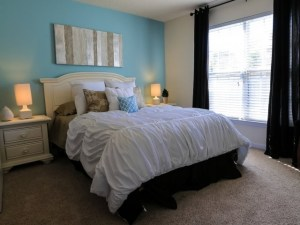 Columbia South Carolina Furnished Rental 4