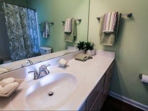 Columbia South Carolina Furnished Rental 5