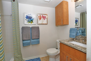 Tampa Corporate Apartment Rentals 15