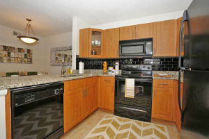 Tampa Corporate Apartment Rentals 21