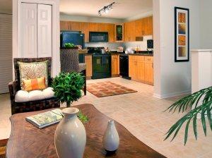 Tampa Corporate Apartment Rentals 29