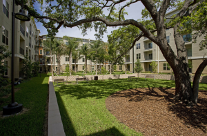 Tampa Furnished Apartments 7