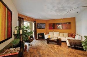 furnished 65