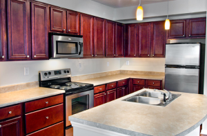 furnished apartment in Columbia SC 9