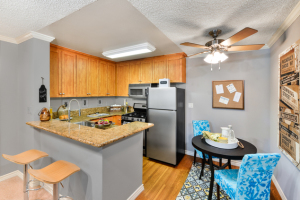 furnished apartments in la 14