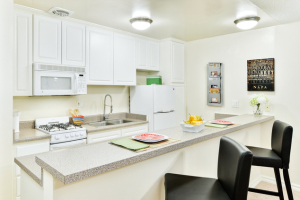 furnished apartments in la 16