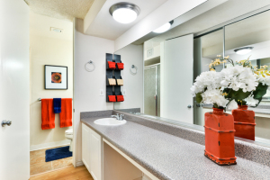 furnished apartments in la 17