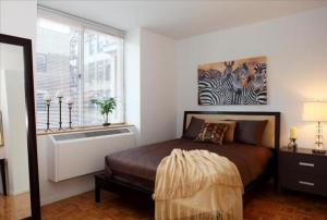 furnished housing nyc 15