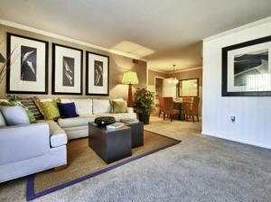 mesa az furnished rental 1