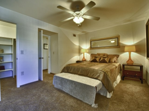 mesa az furnished rental 9