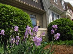 temporary housing rental in nashville 11