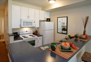 Boulder Colorado Furnished Rentals By FCH 6