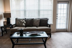 FCH Furnished Housing in Houston Conroe 4