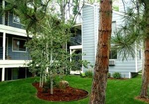 FCH Temporary Housing Boulder Colorado 14