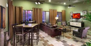 supprise az furnished rentals 5