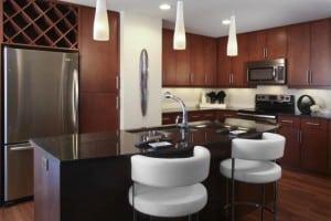 Blu Corporate Housing of Denver 61