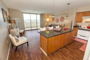 Corporate Apartment Rentals in Denver Blu 12