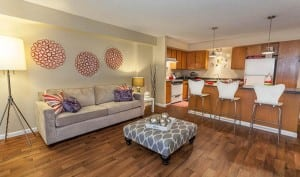 Corporate Apartment Rentals in Denver Blu 3